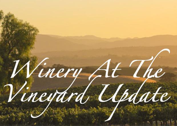 Winery At the Vineyard